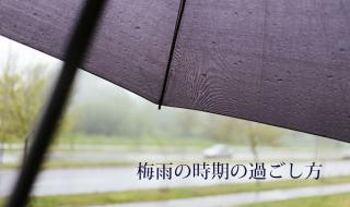 梅雨の時期の過ごし方